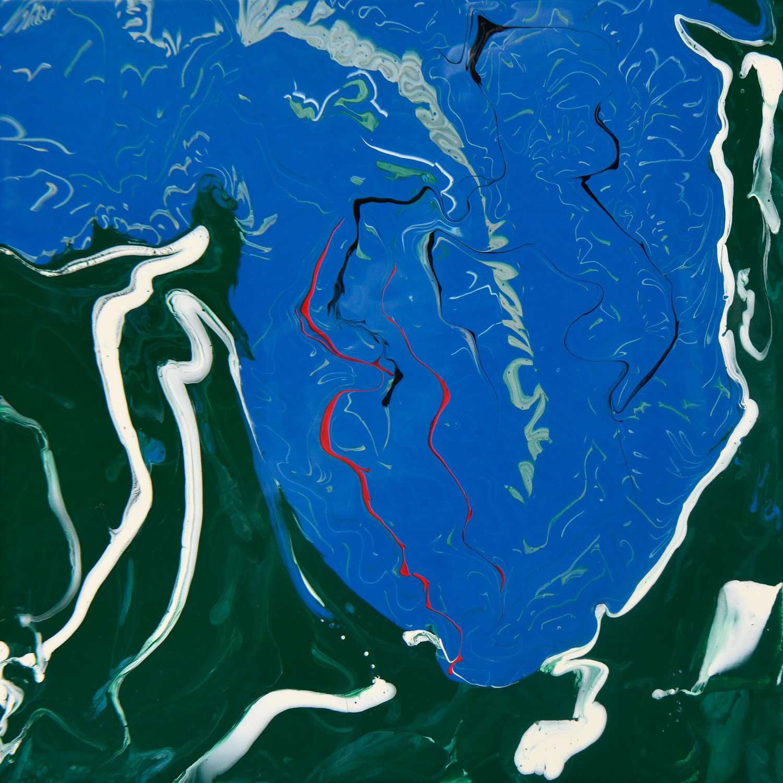 Chasing Loons on Daniel Lake