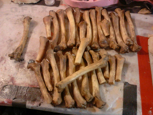 Prop bone