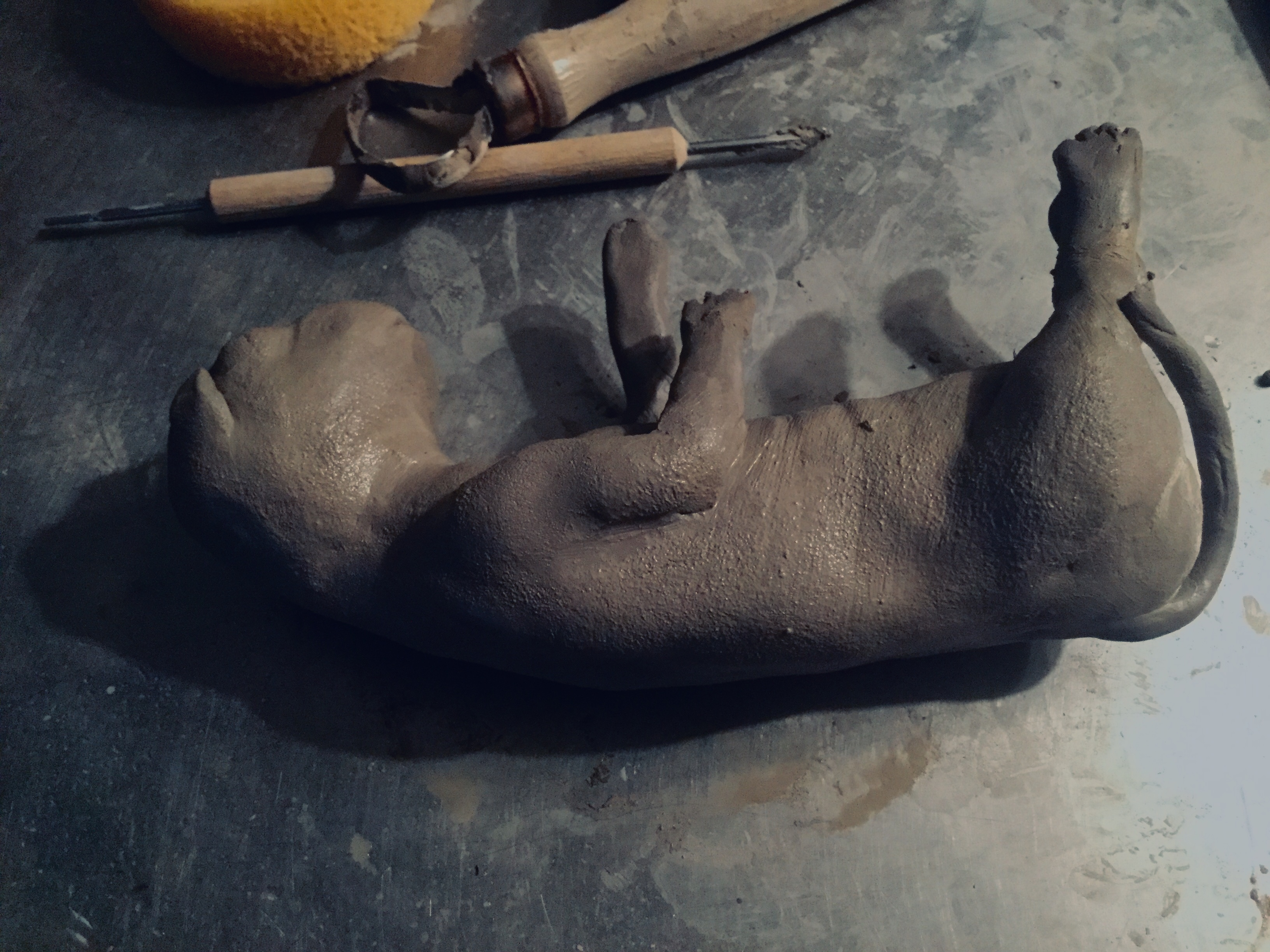 Kitten fetus sculpt
