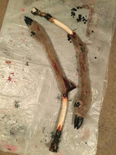 Dismembered Deer leg