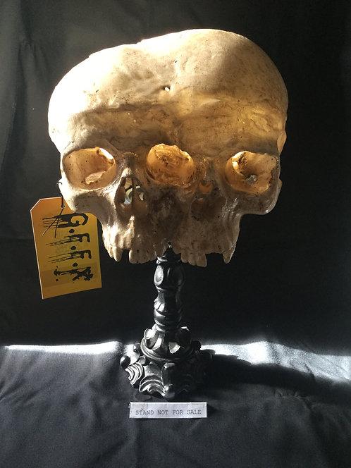 Human skull replica: fused