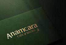 ANAMCARA_mockup_logo01_201208.png