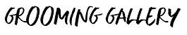 GROOMING GALLERY.png