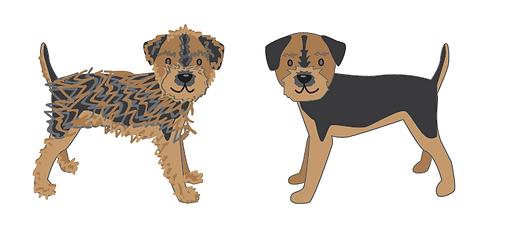 border terrier.png
