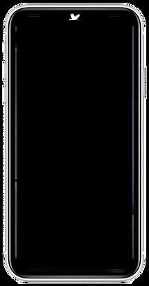 iPhoneXRHawkFrame.png
