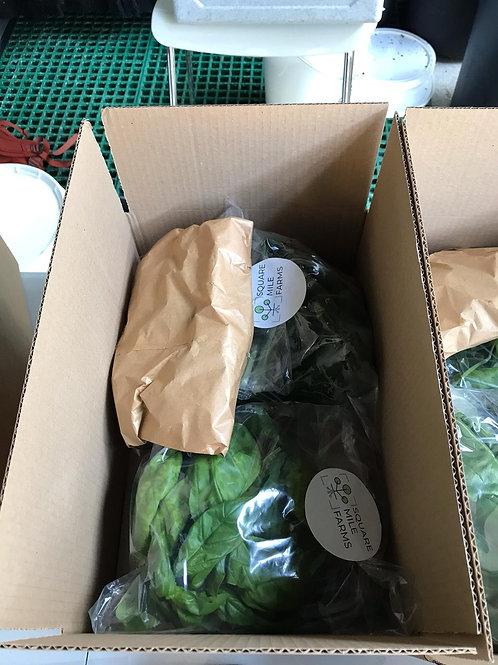 Square Mile Farms Veg Box