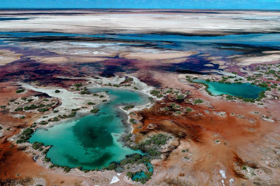 Pete's Pond Lake MacLeod Salt Marsh