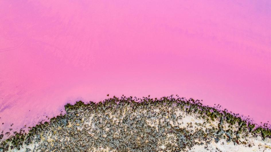 Pink Lake - Port Gregory