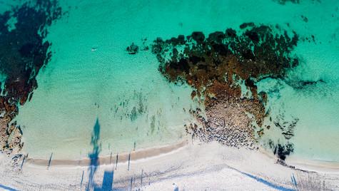 North Cott Pool & Reef