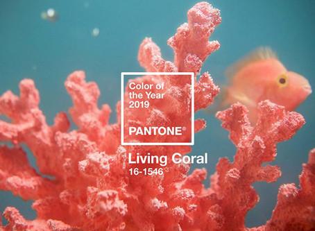 Pantone 2019 Living Coral - Consigli per gli abbinamenti