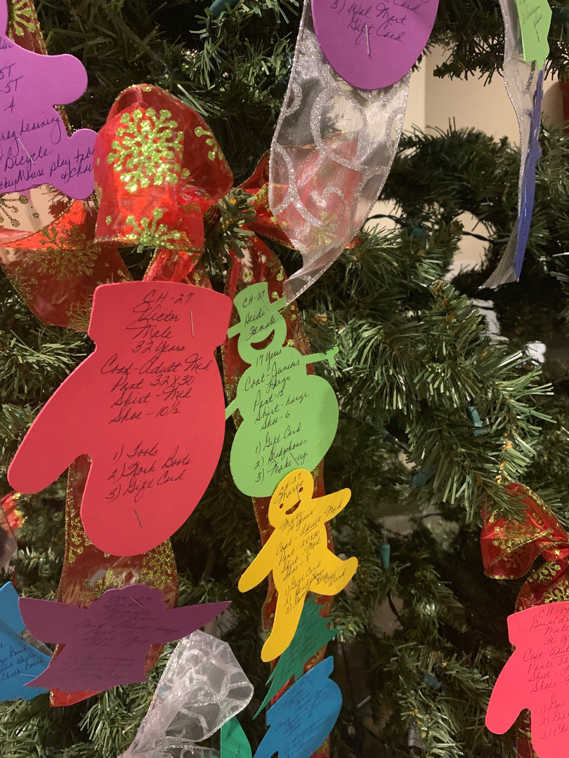 Give a Christmas through Skyline Grace