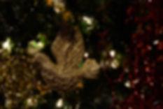 christmas dove.jpg