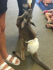 Extreme Animals came to our MDO this week.