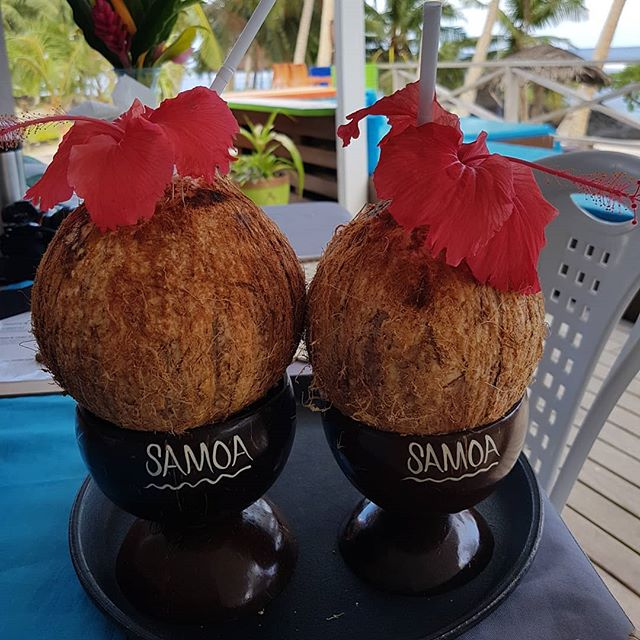 What a lovely pair of coconuts! 🌴💏_#coconuts #coconut #love #nicepair #niu #twins #samoa #style #n