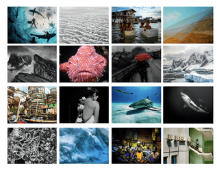 Ocean exhibition collage.png