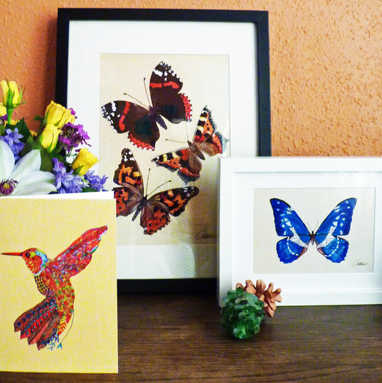 Butterfly Framed Pictures and hummingbird card