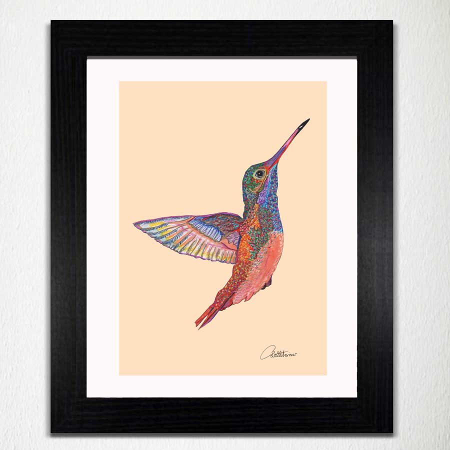 Hummingbird - Colours of Nature Print