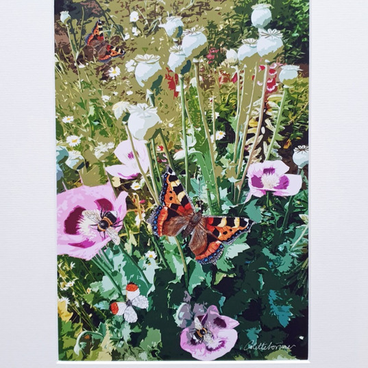 Allotment Poppies - Mixed Media