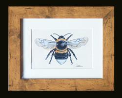 Bumble Bee small oak frame