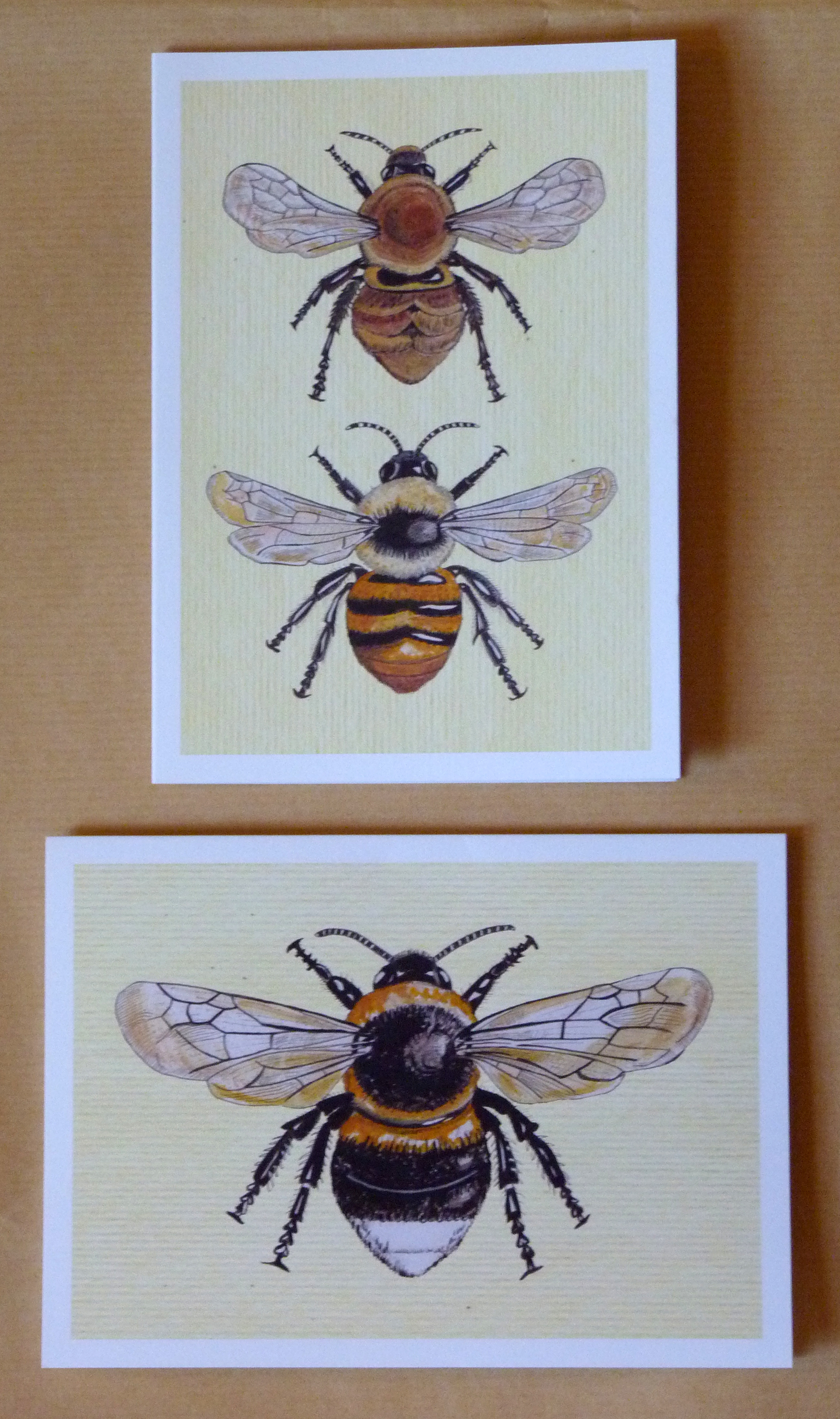 Bee Card pack
