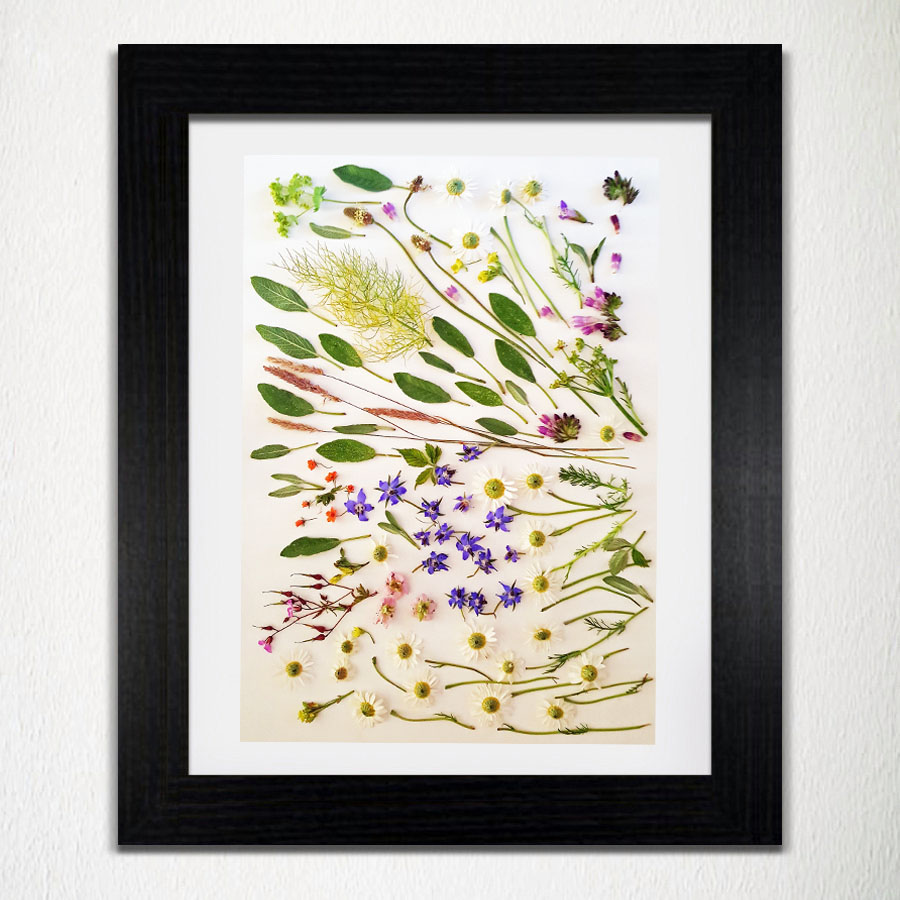 'Botanical' - Wall Art Prt