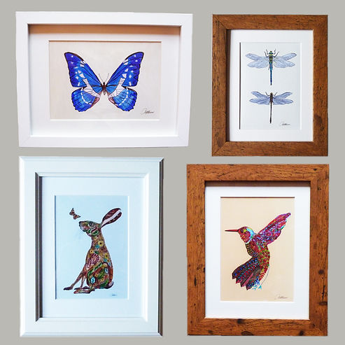 Framed butterfly picture Framed Dragonfly picture Hare painting Hummingbird painting Nature artwork for sale