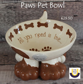 Takeaway%20Pottery%20-%20Pet%20Bowl%20-%