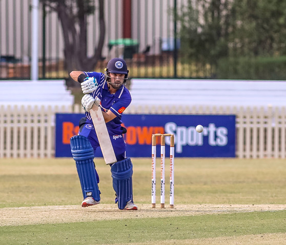 Dogs down in Limited Overs cliff-hanger