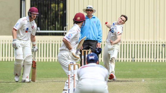 Saints win but T20 Dogs home by 1 run in thriller