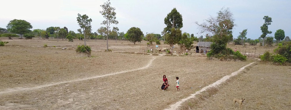 kids-in-field2.jpg