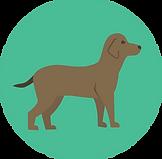 dog (7).png