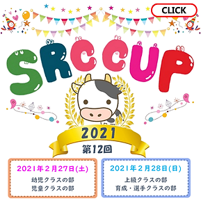 SRCcup12.png