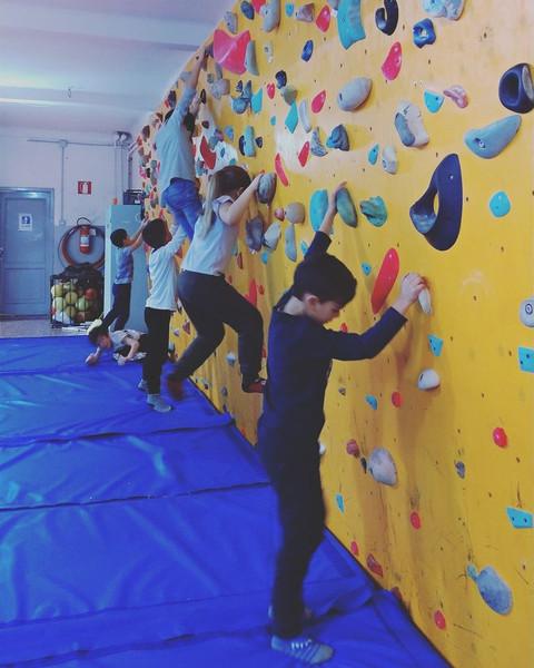 gioco arrampicata.jpg