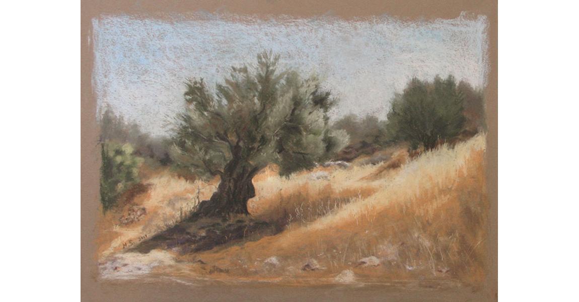 עץ זית על גבעה, 2008