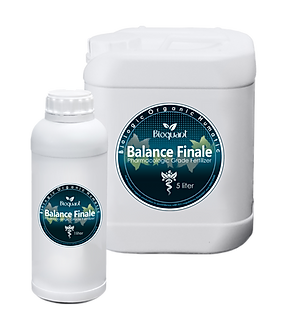 Balance Finale.png