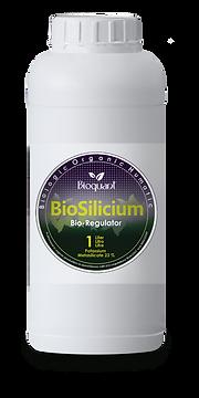 Bio Silicium 1 liter