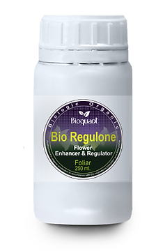 Bio AFF Regulone 250 ml.
