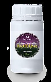 AFF-Finale.png