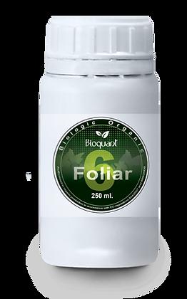 Bio Foliar 6 - 250 ml.