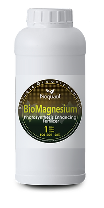 OH Bio Magnesium 1 liter