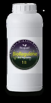 Bio Regulone 1 liter