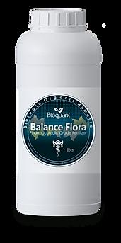 Balance Flora.png
