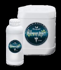 Balance Start.png