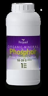 OM Phosphor.png
