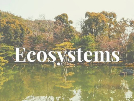 Ecological Restoration- A Need Of The Hour