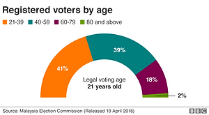 GE14 Registered Voters by Age