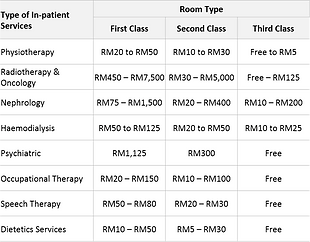 Malaysian Government Hospital Inpatient services and charges