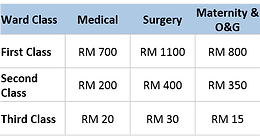 Malaysian Government Hospital Deposit for Hospitalisation