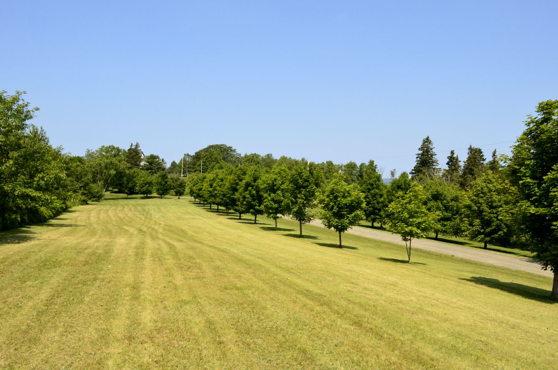 Front Fields