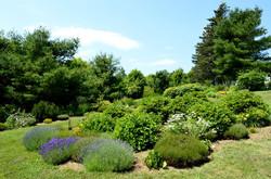 Hillside Gardens2
